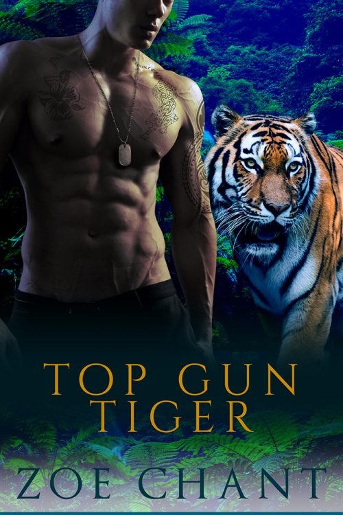 Top Gun Tiger by Zoe Chant