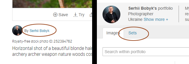 Part of Shutterstock page with stock photo contributor name and the Sets link circled.
